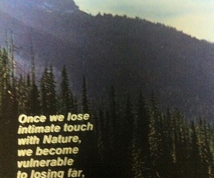 nature, indie, and quote image