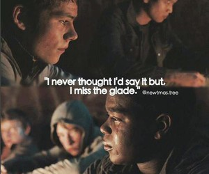 the scorch trials and the maze runner image