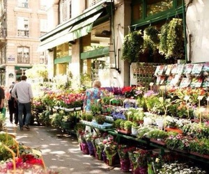 flowers, street, and paris image