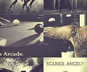 hush hush, book, and angel image