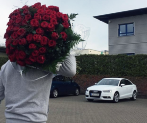 love, rose, and car image