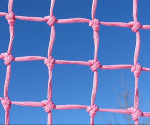 pink, sky, and blue image