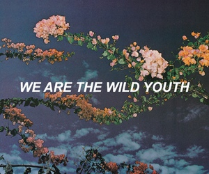 quotes, youth, and grunge image