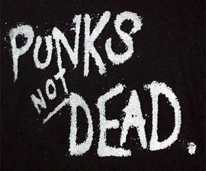 punk, music, and punks not dead image