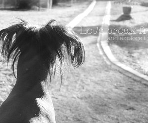 black and white, dog, and photography image