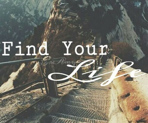 find, ladders, and life image