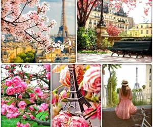 Collage, france, and paris image