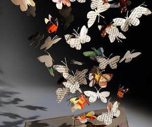 book, butterflies, and shadow image