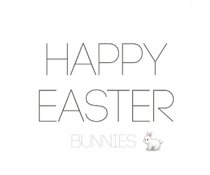 bunnies, bunny, and easter image