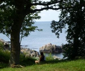 denmark, travel, and bornholm image