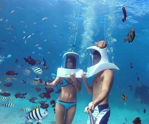 summer, couple, and fish image