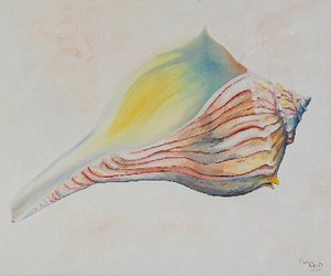 rainbow, shell, and painting image