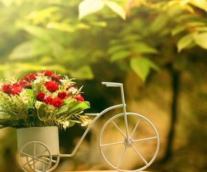 flowers, bike, and nature image