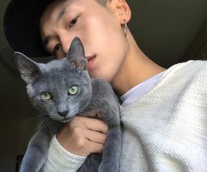 cat, boy, and korean image