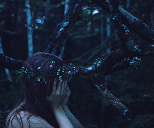 forest, flowers, and dark image
