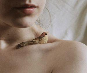 bird, girl, and skin image