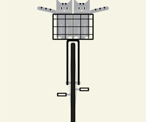 bike, cats, and friday image