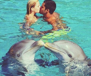couple, love, and dolphin image