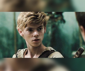 maze, newt, and runner image