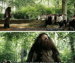 harry potter, fangirl, and funny image