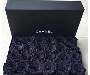 black, chanel, and rose image