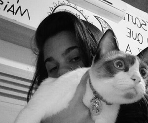 cat love black and white image
