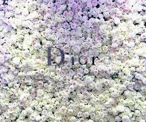 dior and style image