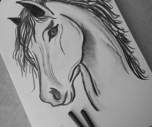 draw, drawing, and horses image