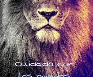 frases, wallpapers, and frases cortas image