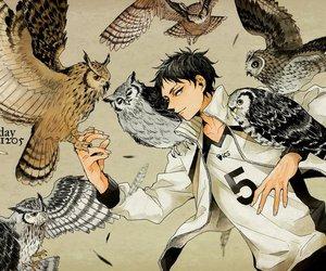 owls and haikyuu image
