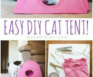 cat, diy, and Easy image