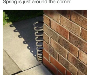 spring, funny, and lol image