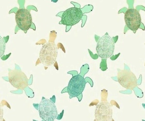 background, turtle, and wallpaper image