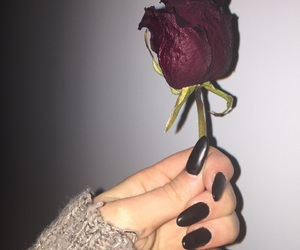 beauty, black nails, and flower image