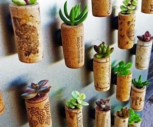 diy, creative, and plants image