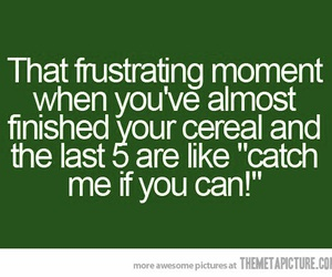 funny and cereal image