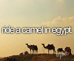 before i die, camel, and egypt image