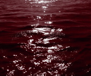 blood, red, and sea image