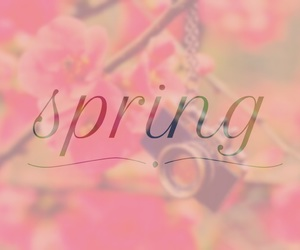 easel, funny, and spring image
