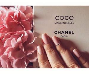 coco chanel, flower, and fashion image