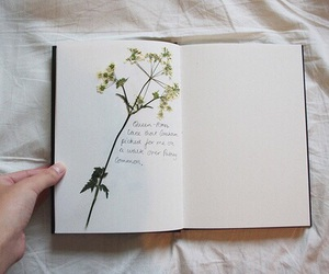 flowers, indie, and diary image