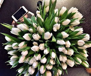 spring, flowers, and tulips image