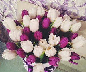 spring, tulips, and flowers image