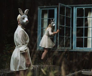 rabbit, forest, and girl image