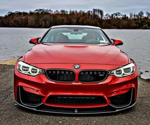 bmw and 👅 image
