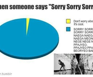 elf, kpop, and sorry sorry image