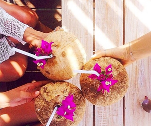 summer, coconut, and flowers image