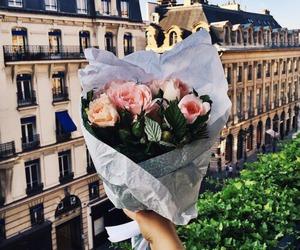 flowers, rose, and paris image