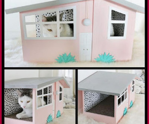 cat house, cats, and diy projects image
