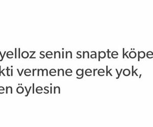 snap, tumblr, and türkçe image